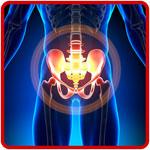 """Sabato 17 maggio seminario gratuito """"Patologie del bacino: test e tecniche efficaci nel trattamento osteopatico"""""""