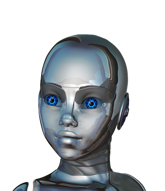 Social Robotics: main trends and perspectives in Europe
