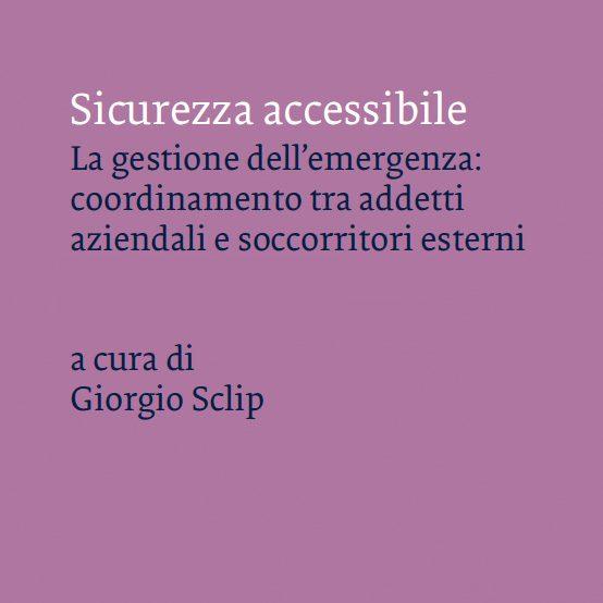Presentazione del libro sicurezzAccessibile